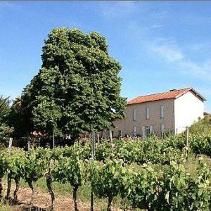 vignoble Galineau propriétaire récoltant bordeaux supérieur rouge Pellegrue